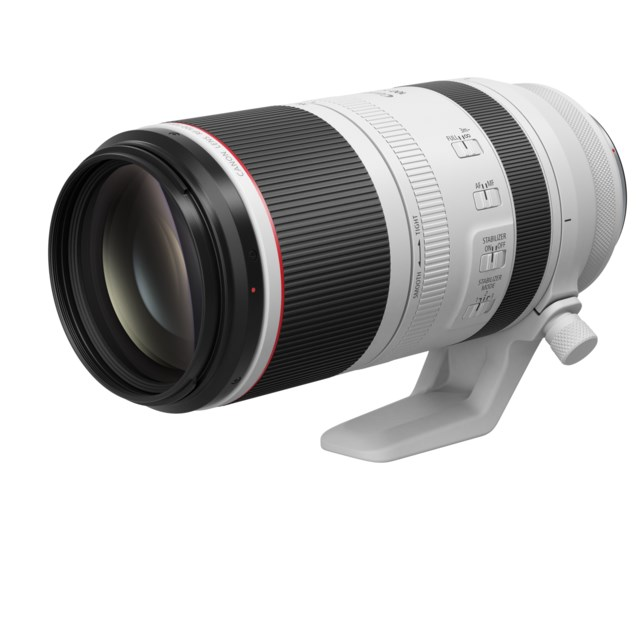 Canon RF 100–500 mm f/4.5–7.1 L IS USM